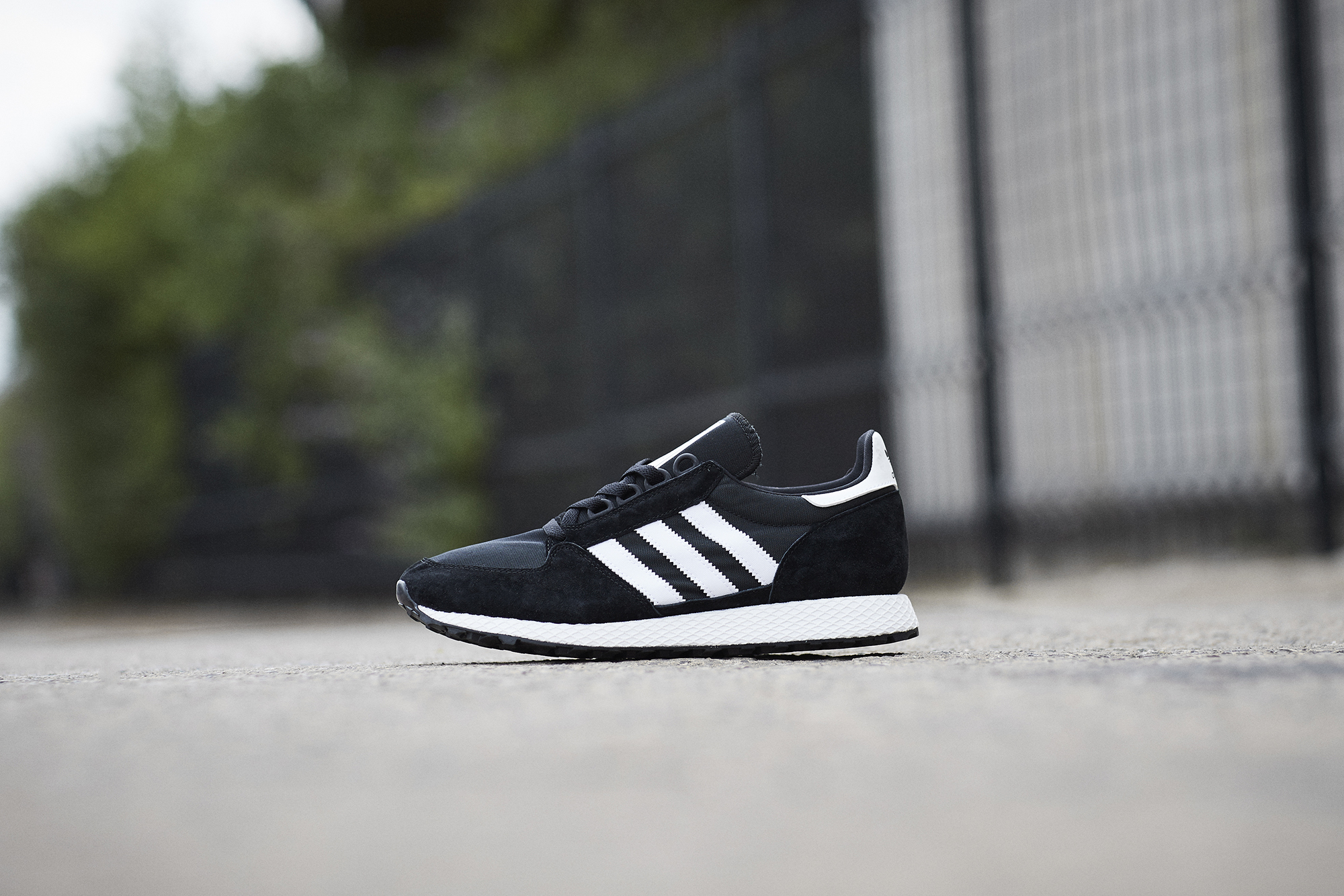 scotts | adidas Originals Forest Grove